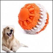 Bola Dentada - Brinquedo Interativo