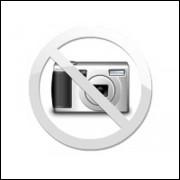 Antena Vhf Slim Bold 5/8 Com Mola Steelbras