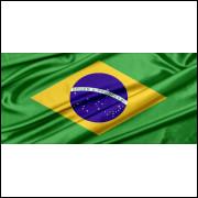 Painel Sublimado Bandeira do Brasil 2,8 Alt X 6,0 Larg Com Ilhós