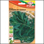 Sementes De Hissopo - Alfazema De Caboclo Isla Multi