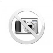 ANEL SEGMENTO DO MOTOR HAFEI TOWNER VAN/BAU  1.0 8V 2007...(BICUDINHA) (STD) (JOGO)