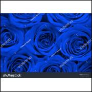 Painel Tecido Sublimado Rosas 2,0 Alt X 2,5 Larg Sem Emenda Com Ilhós